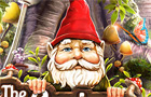 The Curious Gnome