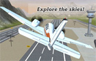 Giochi online: Free Flight Sim