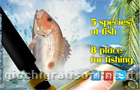 Giochi vari : Sea Fishing